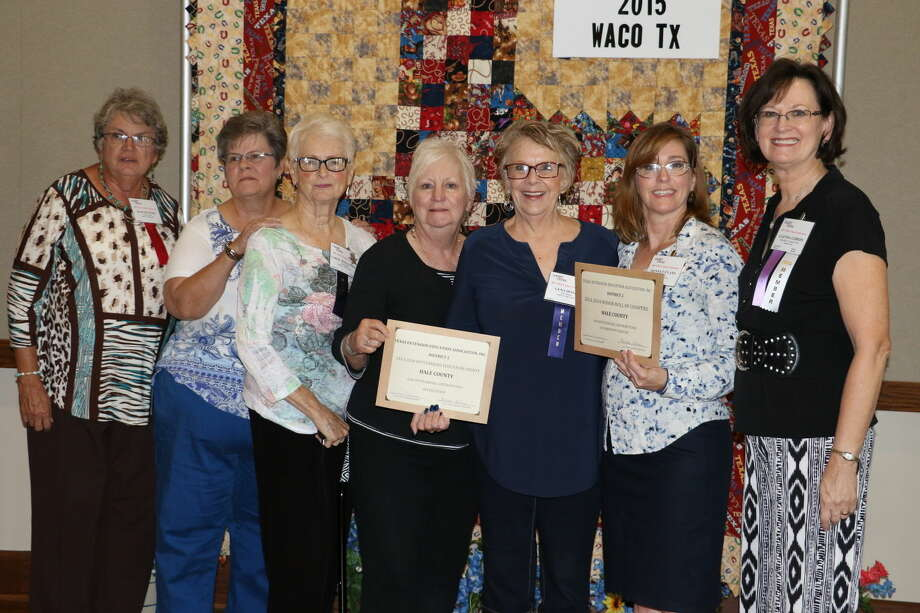 Hale County received the District 2 Honor Roll of Counties Recognition during the TEEA State Meeting. On hand for that presentation are Martha Todd, Carol Coggin, Carol Williamson, Ann Reilly, Gena Doyle, Donnett Evans and Glenda Gibson.