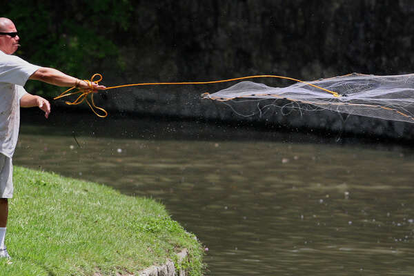 Guillermo Mendoza casts a net into the San Antonio River on June 4, 2009. Mendoza was catching shad to use for bait for a fishing expedition later in the day at Miller's Pond.