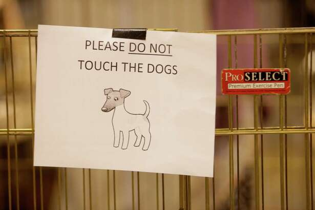 A sign asks visitors to please not touch the dogs in one area of the Houston World Series of Dog Shows at NRG Park, Thursday, July 21, 2016, in Houston.