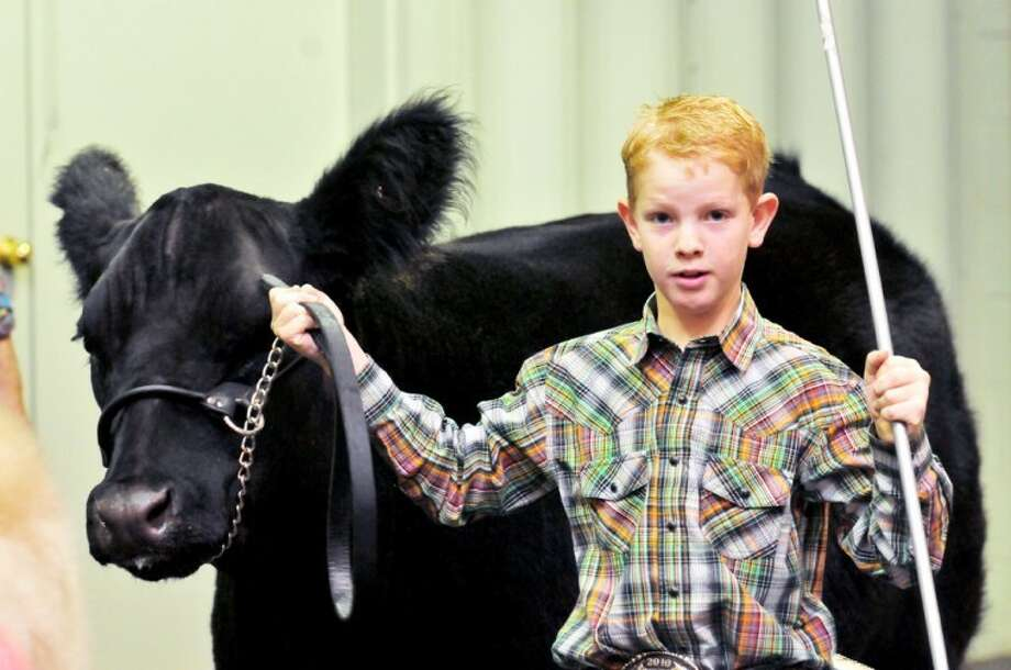 Kelton Offield heads into the show ring during Saturday's Plainview Stock Show at the Ollie Liner Center. The Hale County Stock Show will be held there next weekend. Photo: Kevin Lewis/Plainview Herald