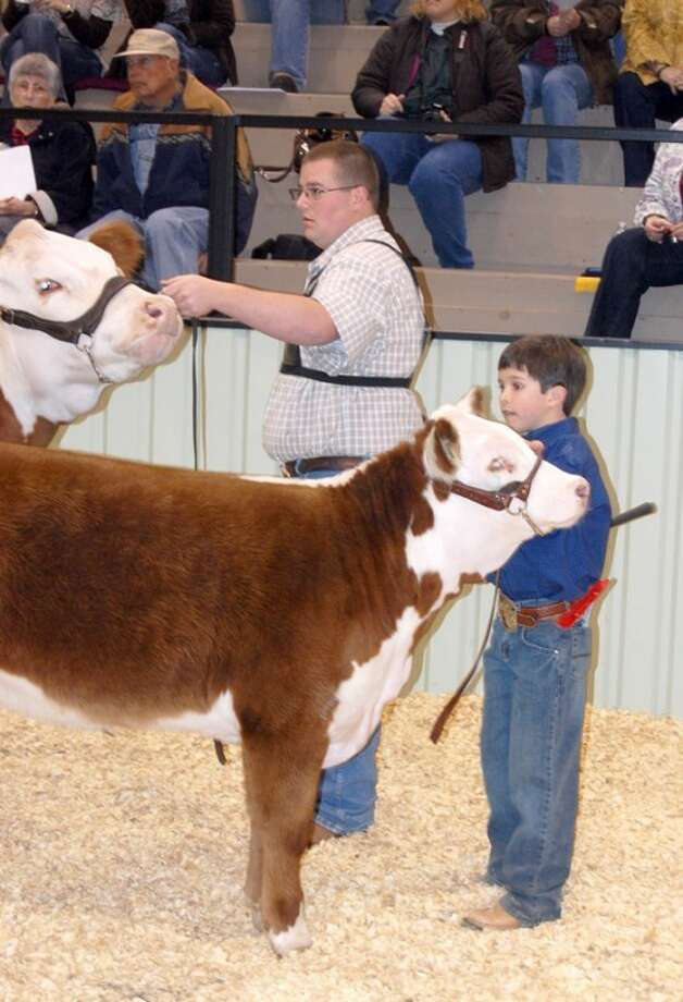 Doug McDonough/Plainview HeraldA cow-calf heifer pair, exhibited by Zach Grimsley (left) and Caden Carver of Abernathy, proved to be a winning combination Saturday morning at the 77th annual Hale County Stock Show. Grimsley's animal took the title of Supreme Heifer. The event continues today with a 9 a.m. church service followed by swine judging at 10 a.m. The premium auction is at 6 p.m. Monday. All events are at the Ollie Liner Center.