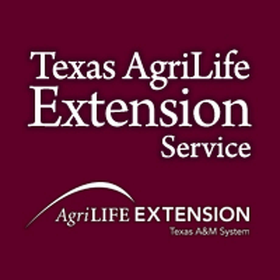 Texas AgriLife Extension logo