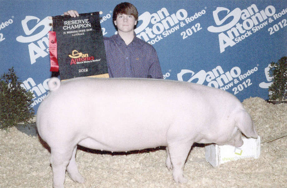 Courtesy PhotoFloyd County 4-H member Heston Graves exhibited the Reserve Champion Landrace Gilt pig at the San Antonio Stock Show and Rodeo. He is in the eighth grade at Plainview Christian Academy.