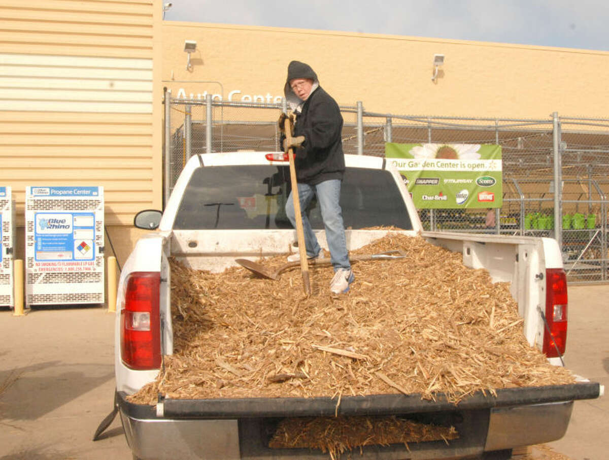 Plainview 4-H member Colton Scott gets ready to shovel mulch for the next customer Saturday morning at a 4-H mulch and tree giveaway outside Walmart Supercenter. The 4-H'ers and representatives from the Hale County Texas A&M AgriLife Extension Service were giving away black cherry seedlings and mulch, both without charge, to all interested individuals. The mulch was supplied by the City of Plainview, which has mulch to give away at the landfill.
