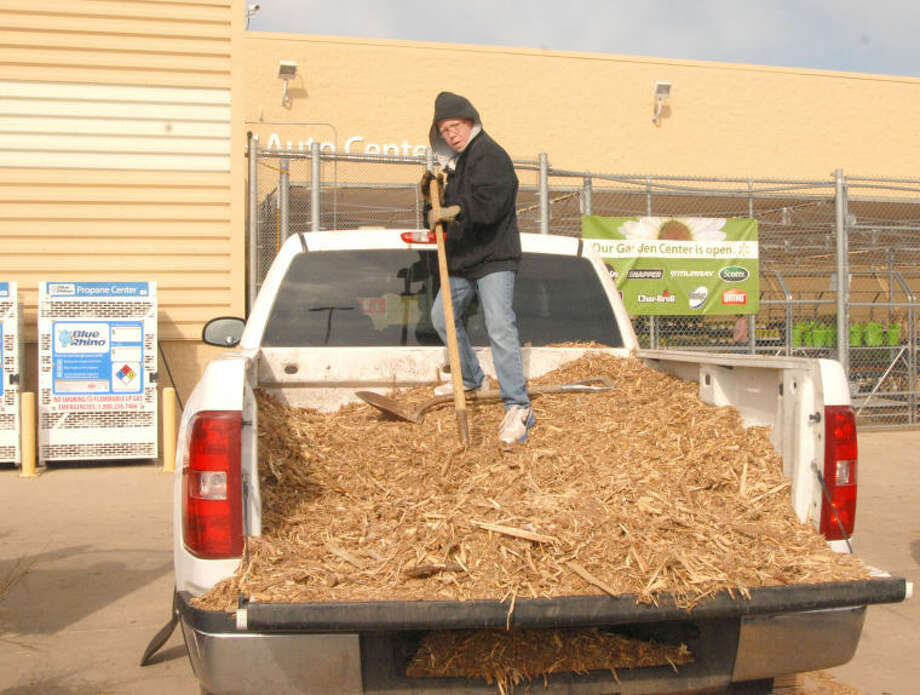 Plainview 4-H member Colton Scott gets ready to shovel mulch for the next customer Saturday morning at a 4-H mulch and tree giveaway outside Walmart Supercenter. The 4-H'ers and representatives from the Hale County Texas A&M AgriLife Extension Service were giving away black cherry seedlings and mulch, both without charge, to all interested individuals. The mulch was supplied by the City of Plainview, which has mulch to give away at the landfill. Photo: Doug McDonough/Plainview Herald