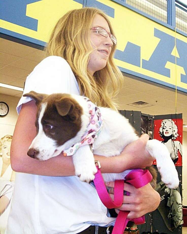 Kevin Lewis/Plainview HeraldPlainview Christian High School freshman Sara Vanderleek holds a border collie puppy that was auctioned at Saturday night's fifth annual auction at Wayland's Laney Center. A raffle for 16 guns brought in $25,000 while the silent and live auction, conducted by Clay Golden, featuring more than 250 donated items drew $78,000, all to benefit Plainview Christian Academy.