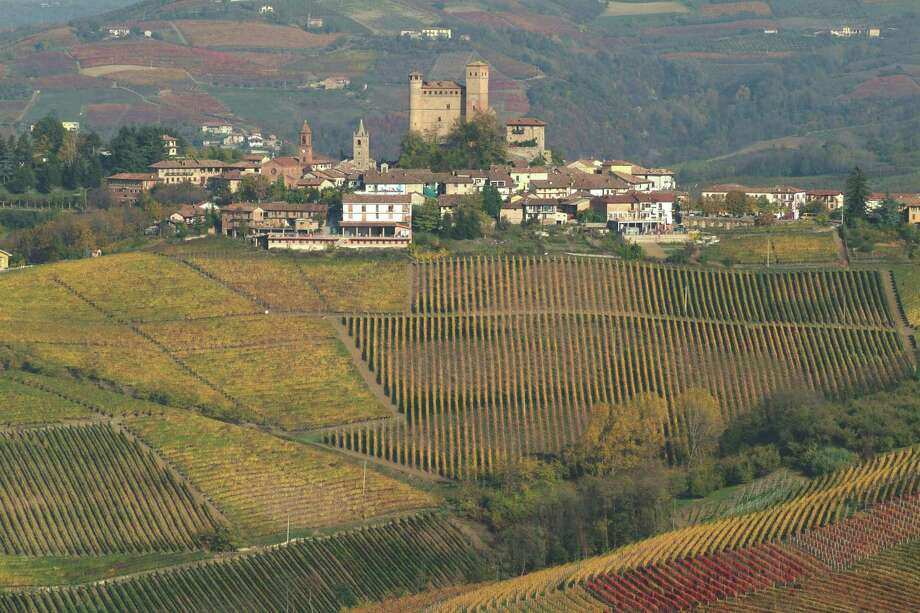 The Langhe district of Italy's Piemonte region is returning to the past by adding barbera blends, in the case of Gaja, with other growers looking to the future via green harvesting and biodynamic farming. Photo: Terlato Wines