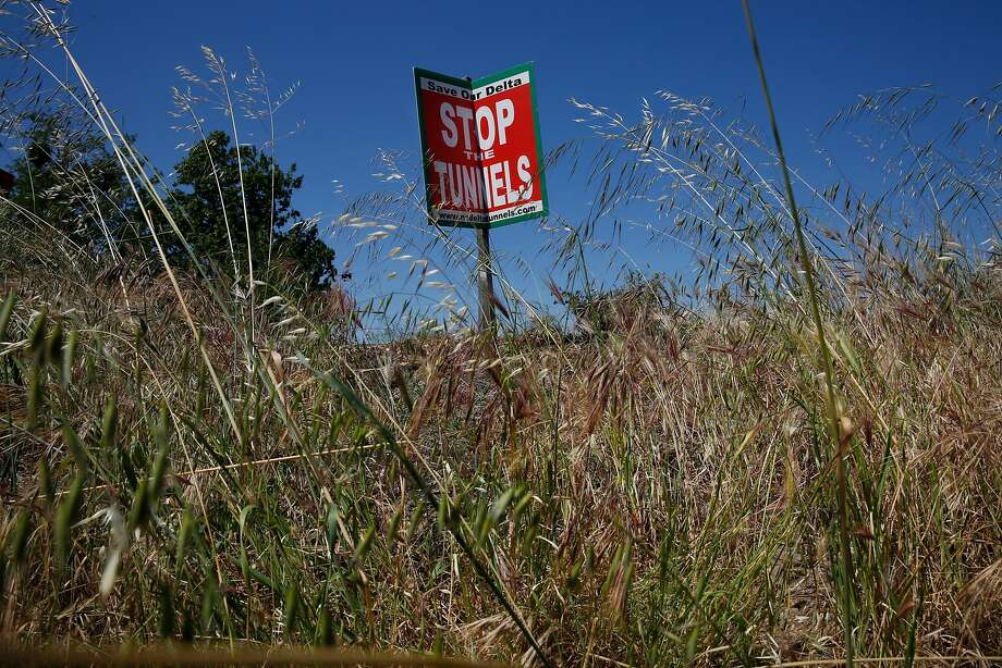 Swaying in the wind along River Road on the Sacramento River, a sign protests Gov. Brown's proposed twin tunnels that will ship water from the river southward. Photo: Leah Millis, The Chronicle