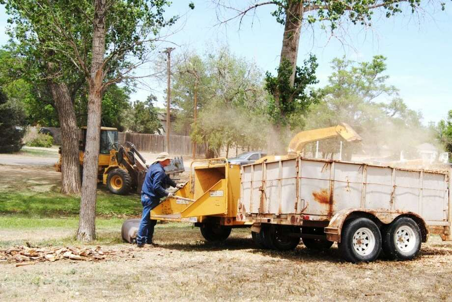 Doug McDonough/Plainview Herald Marcus Beversdorf with the city parks department feeds tree limbs and branches into a wood chipper in Lloyd Woods Memorial Park on Thursday while other city crew members clear debris following the removal of several dead trees. Mulch from the downed trees will be recycled by the city for use under playground equipment as well as to help retain moisture in flower beds and around trees and scrubs. Mulch also is available to the general public free of charge at the city landfill.