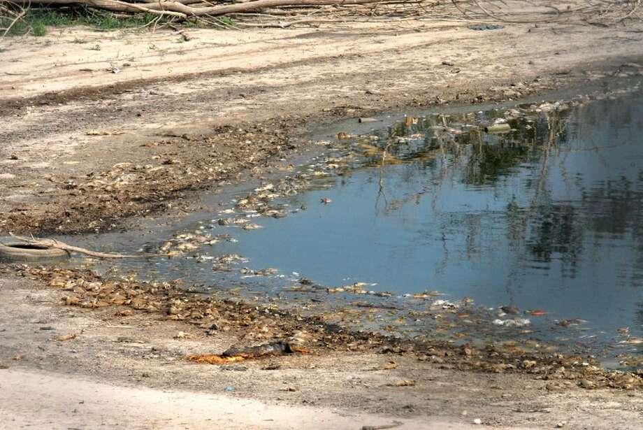 This private pond behind the Plainview Apartments complex between 16th and 19th streets has begun to dry up, and the result has been a significant fish die-off. Residents have complained of the stench and flies that are coming off the decaying carcasses around the waterline, but the city's Director of Public Works Mike Gilliland said the city's options are limited because the pond is on private property. Photo: Richard Porter/Plainview Herald