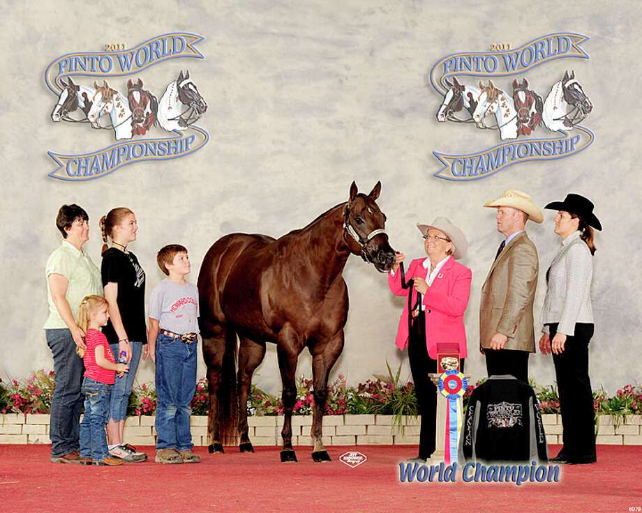 Sandy Smith (holdinghorse) shows off the horse with which she and her grandson,Benjamin (to left of horse), won world championships at the recentPinto World Championship in Tulsa. The horse, Playgirls Tardy Kid,was shown in halter competition by Benjamin in the Youth BreedingStock mares class and by Smith in the Amateur Breeding Stock maresthree-years-old and older. The two are joined by Benjamin's mom andSmiths daughter, Kelley Bozeman (left) Hanna Bozeman, HeatherBozeman, who took third place in the Youth Breeding Stock maresclass, Brock Allen and Kristi Allen, also Smith'sdaughter. Photo: Courtesy Photo