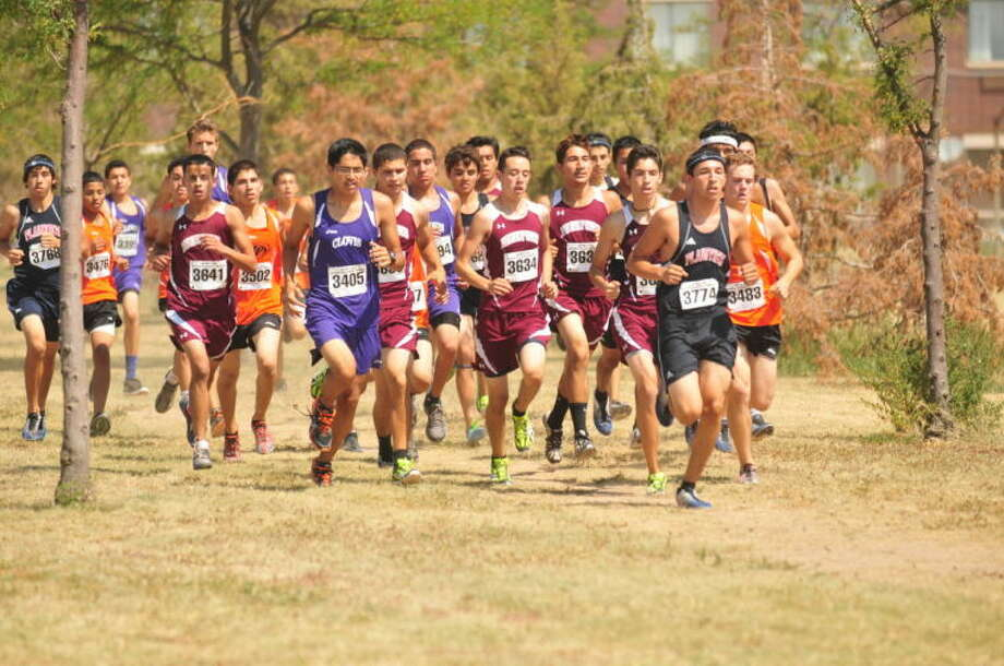 Plainview's Jarel Rosas (3774) leads the pack during a cross country race earlier this season. Rosas, the defending District 4-4A champion, is determined to help his team to a district championship Thursday at Mae Simmons Park in Lubbock. Photo: Homer Marquez/Plainview Herald