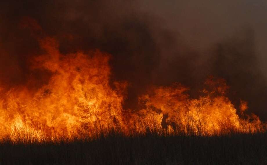 Between grass fires and a lack of rain, the region's pastures are not producing food for livestock Photo: Richard Porter/Plainview Herald