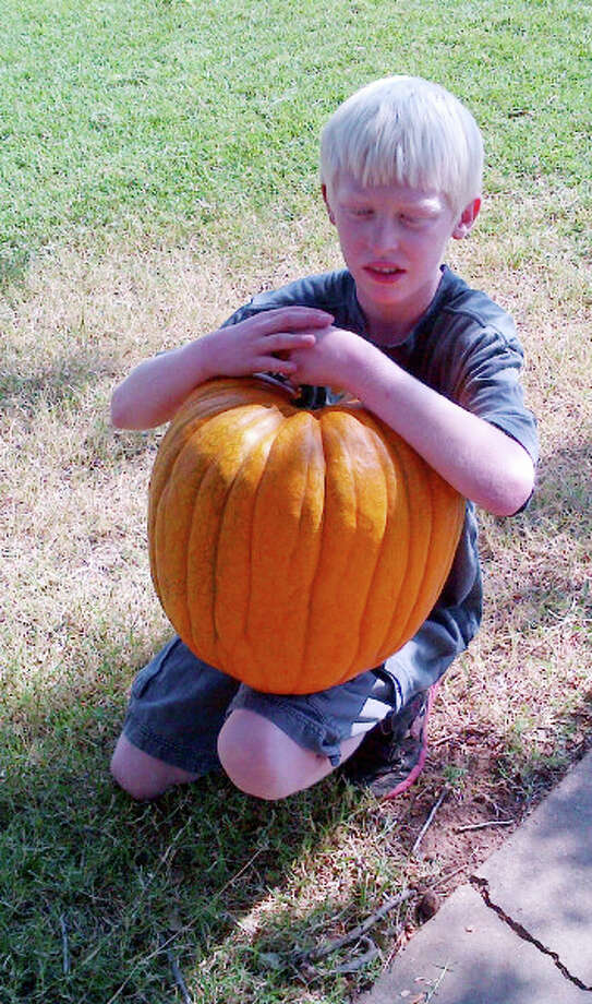Kaleb holds one of 15 pumpkins that he grew from three seeds planted in his grandmother's garden last spring. Photo: Courtesy Photo | Debbie Coffman