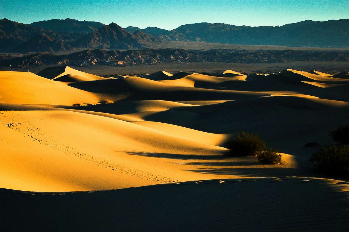 Death Valley National Park's sand dunes glow at dawn.