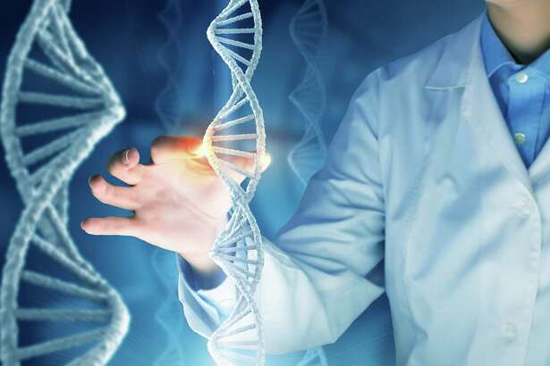 A Yale research team has designed a system to modify multiple genes in the genome simultaneously, while also minimizing unintended effects. (Photo courtesy Fotolia/TNS)