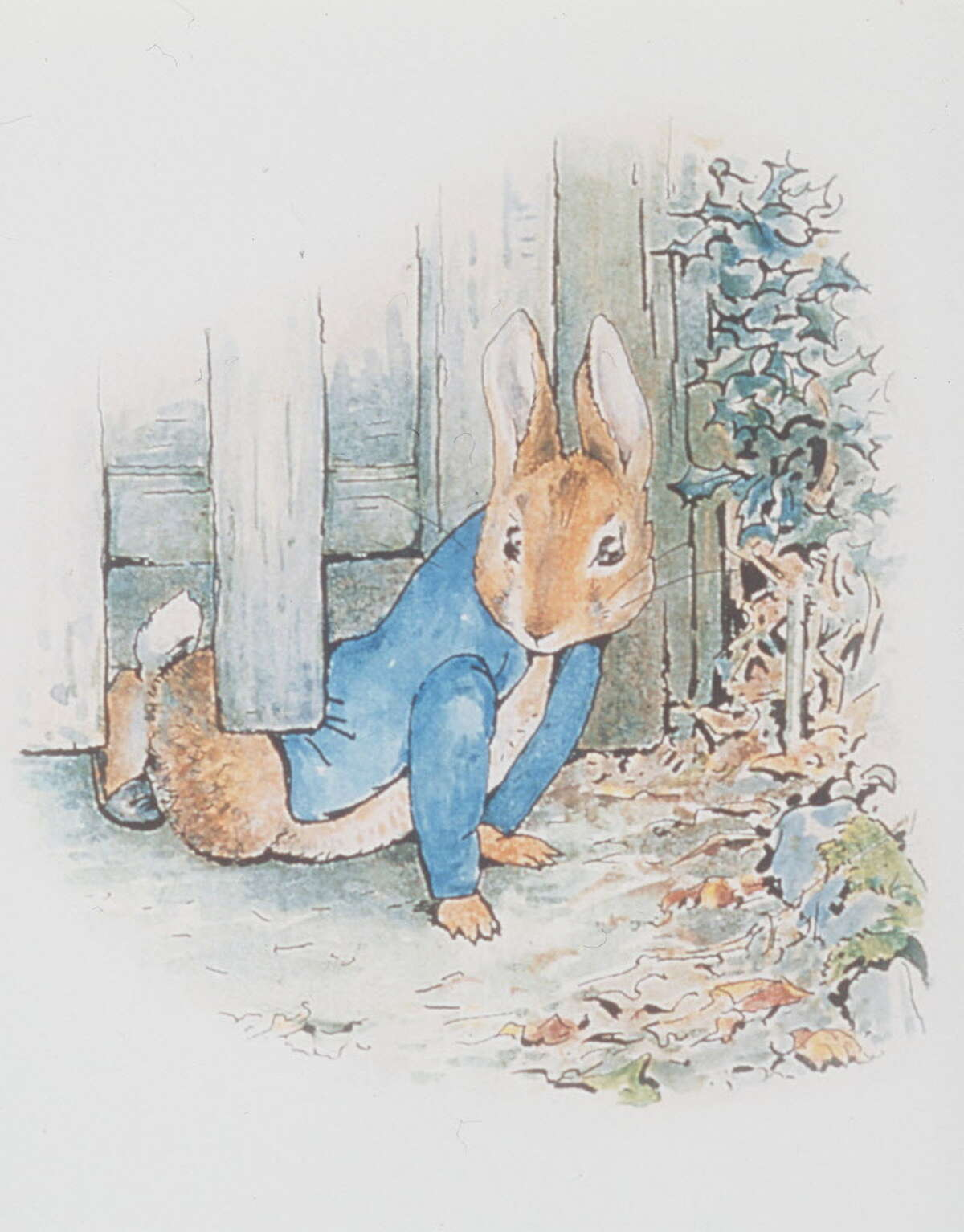 Early years Helen Beatrix Potter, called Beatrix, was born on July 28, 1866 to wealthy British parents. She was educated at home by governesses, including Annie Carter Moore.She loved drawing plants and animals and spending tme in nature.