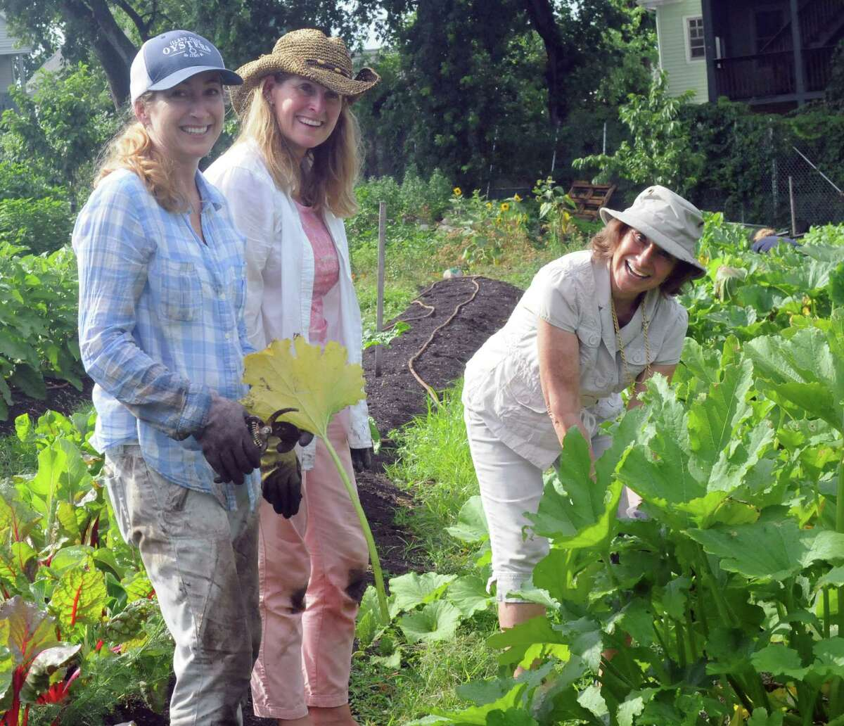 Shana Hurkala, Tara Dolman and Ann Gilmartin work at Fairgate Farm in Stamford, CT, on Monday, July 25, 2016, as part of the 30th anniversary celebration for Wings Unlimited, a meeting planning company in Darien.