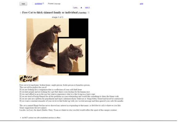Ringo the cat has been put up for adoption in Austin for his unique personality. Any thick-skinned or soulless person would be lucky to have him, according to the ad. Hoever, Not all cats are created equal. Take a look through the gallery to see less threatening cats looking confused in adorable costumes.  Photo: Craigslist Listing Screen Shot