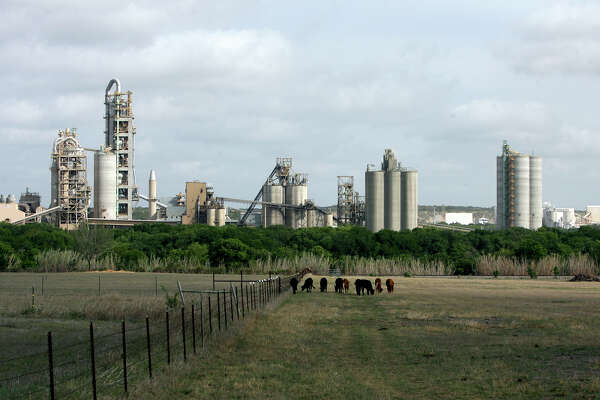 Cattle graze in a pasture near the Cemex plant near New Braunfels in 2009.