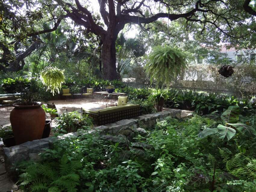 One of the reasons the Flatos bought their Alamo Heights home is the garden area and the trees, including one that