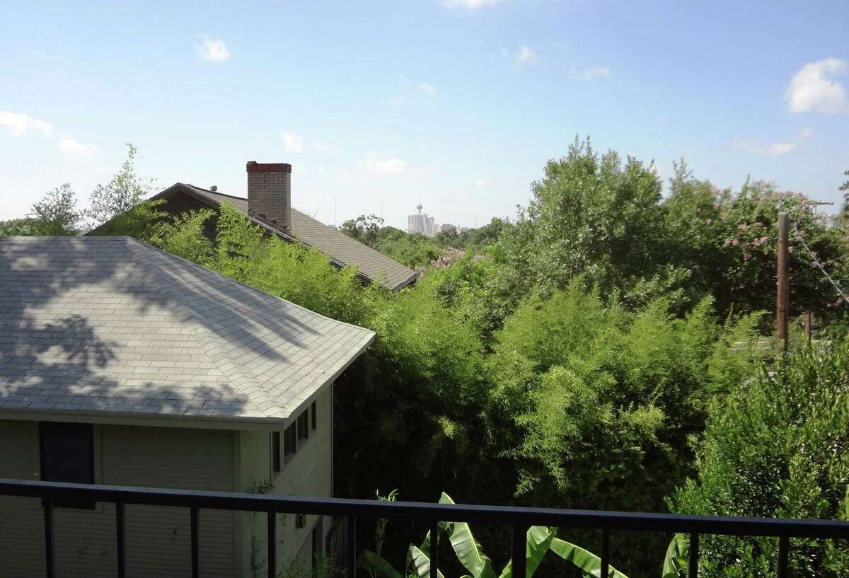 The view from the top floor - over the Monte Vista treetops, with downtown in the distance - is a major reason Davis Sprinkle bought his house.