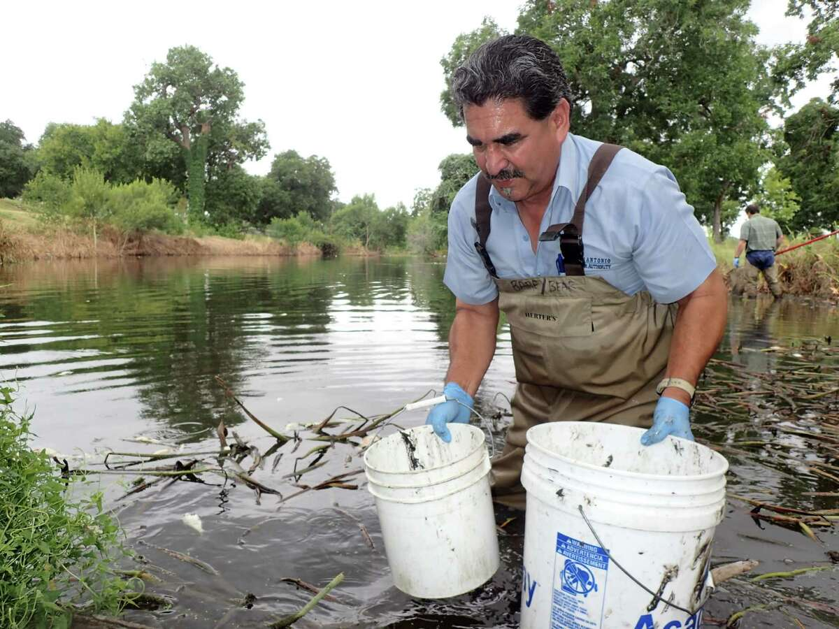 San Antonio River Authority biologists respond to a fish kill near Espada Park.