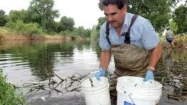 San Antonio River Authority biologists respond to a fish kill near Espada Park.
