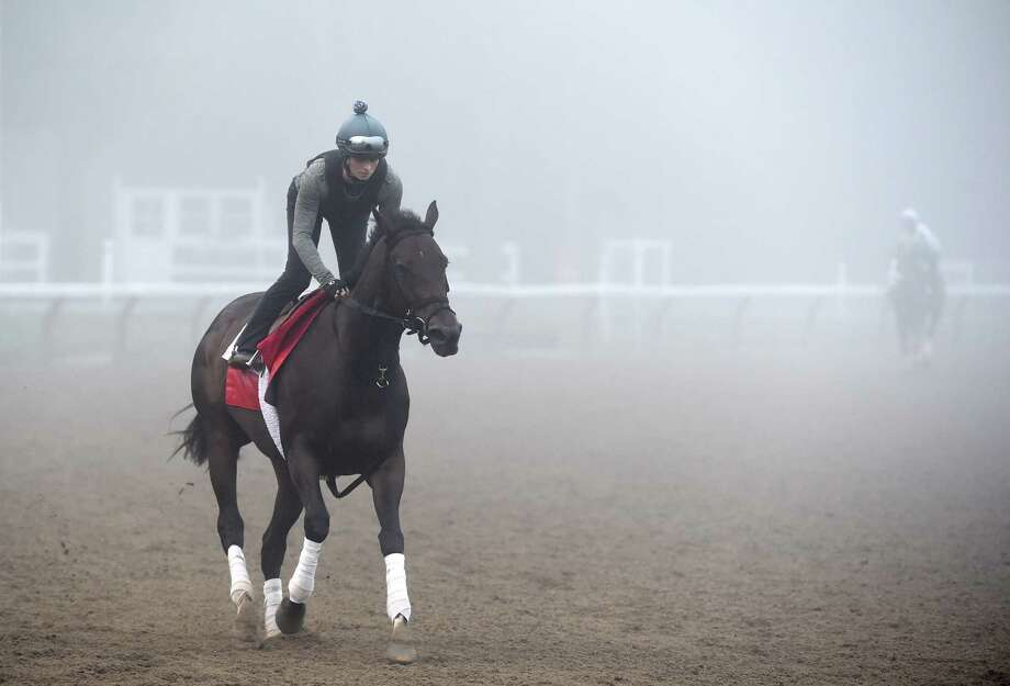 Champion Turf Filly Tepin goes out in thick fog for exercise this morning Sunday July 24 2016 at the Saratoga Race Course in Saratoga Springs, N.Y. (Skip Dickstein/Times Union) Photo: SKIP DICKSTEIN