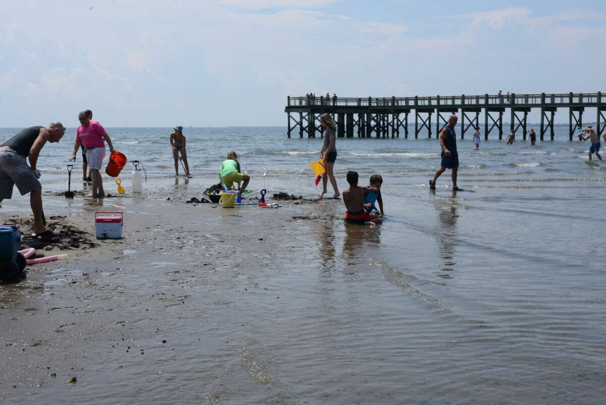 The Milford Arts Council 39th annual Sand Sculpture Competition was held at Walnut Beach on July 30, 2016. The annual event draws over 50 sand sculptors and hundreds of spectators each year. Were you SEEN?