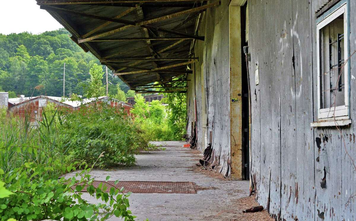 Overgrown building at the former Fort Orange Paper mill Thursday July 28, 2016 in Schodack, NY. (John Carl D'Annibale / Times Union)