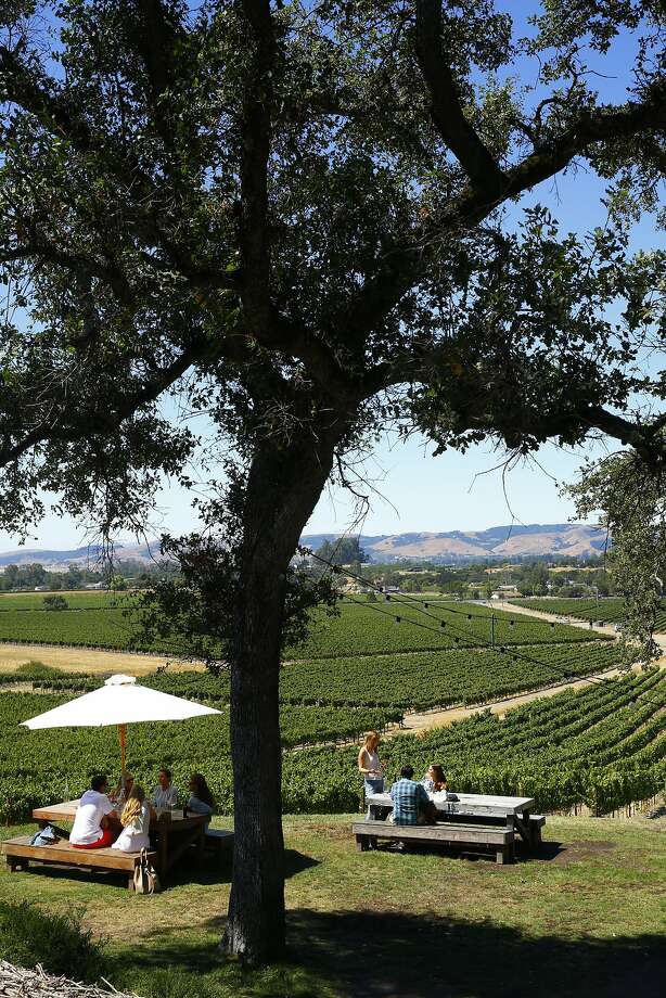 The outdoor wine tasting area at Scribe winery in Sonoma. Photo: Craig Lee, Special To The Chronicle