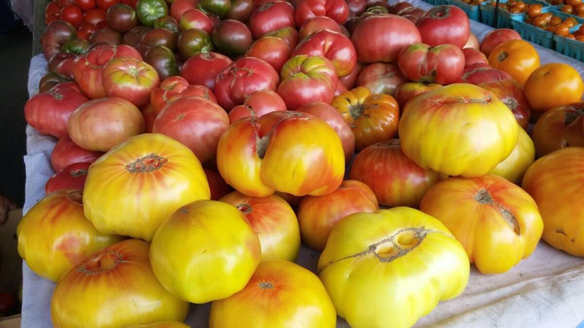 Heirloom organic tomatoes from Riverbank Farm.