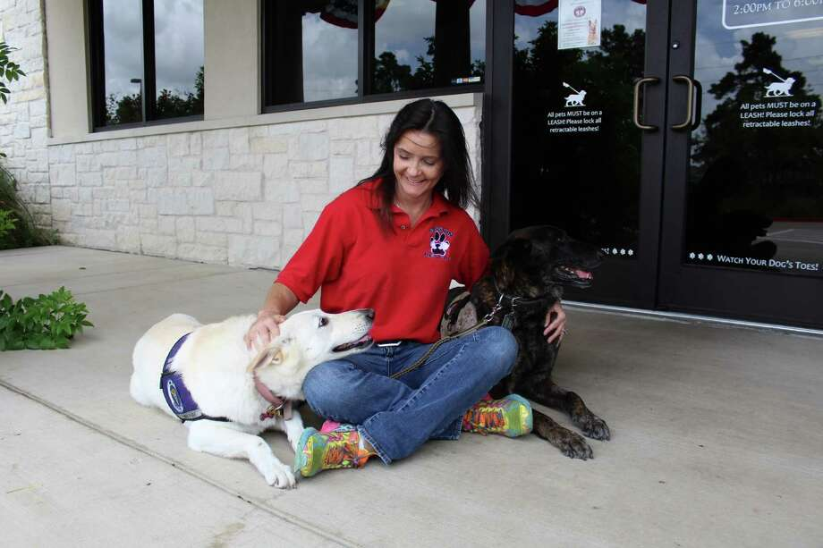 President of Mission K9 Rescue Kristen Maurer is flanked by two retired working dogs. Mission K9 Rescue proves medical care, transportation and homes for retiring military and working dogs. Photo: Courtesy
