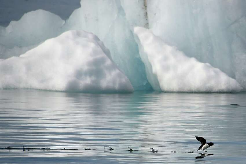 There's that unexpected rise in a dangerous form of mercury coming out of the melting ice after it was salted for many decades by industry: As Phys.org reported Aug.1: New research has found methylmercury-a potent neurotoxin-in sea ice in the Southern Ocean. Published in the journal Nature Microbiology, the results are the first to show that sea-ice bacteria can change mercury into methylmercury, a more toxic form that can contaminate the marine environment, including fish and birds. If ingested, methylmercury can travel to the brain, causing developmental and physical problems in foetuses, infants and children. Why is everyone so worried about kids!?