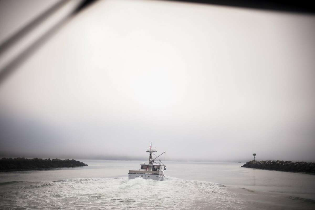 In this file photo, a fishing vessel heads past the research vessel Fulmar and out of Bodega Bay harbor.
