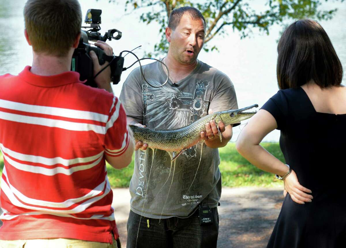 George Marx, center, of Schenectady holds a 32-inch alligator gar he caught yesterday from Central Park's Iroquois Lake as he speaks with reporters Saturday Aug. 6, 2016 in Schenectady, NY. (John Carl D'Annibale / Times Union)