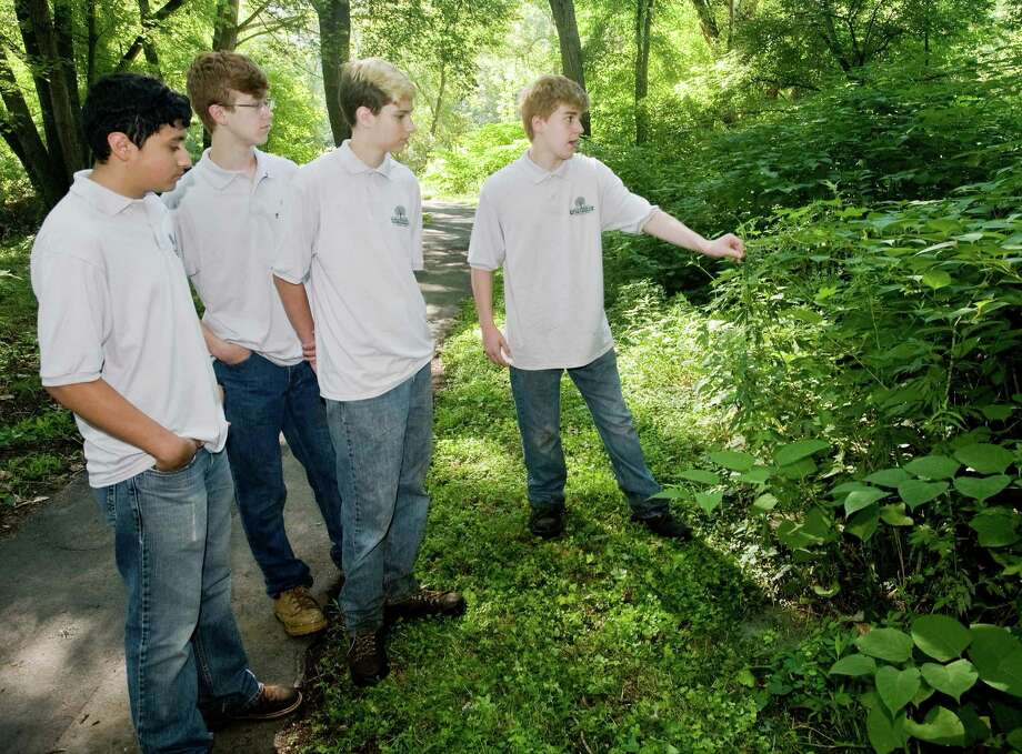 Fabian Mejia, 15, Simon Shaffer, 17, Digby Barrios, 14 and Lance Shaffer, 14, all of Danbury, discuss the fioliage at Still River Greenway in Danbury as part of a youth stewardship program through the Housatonic Valley Association. The program is called the Still River Watershed Connections. Thursday, Aug. 4, 2016 Photo: Scott Mullin / For Hearst Connecticut Media / The News-Times Freelance