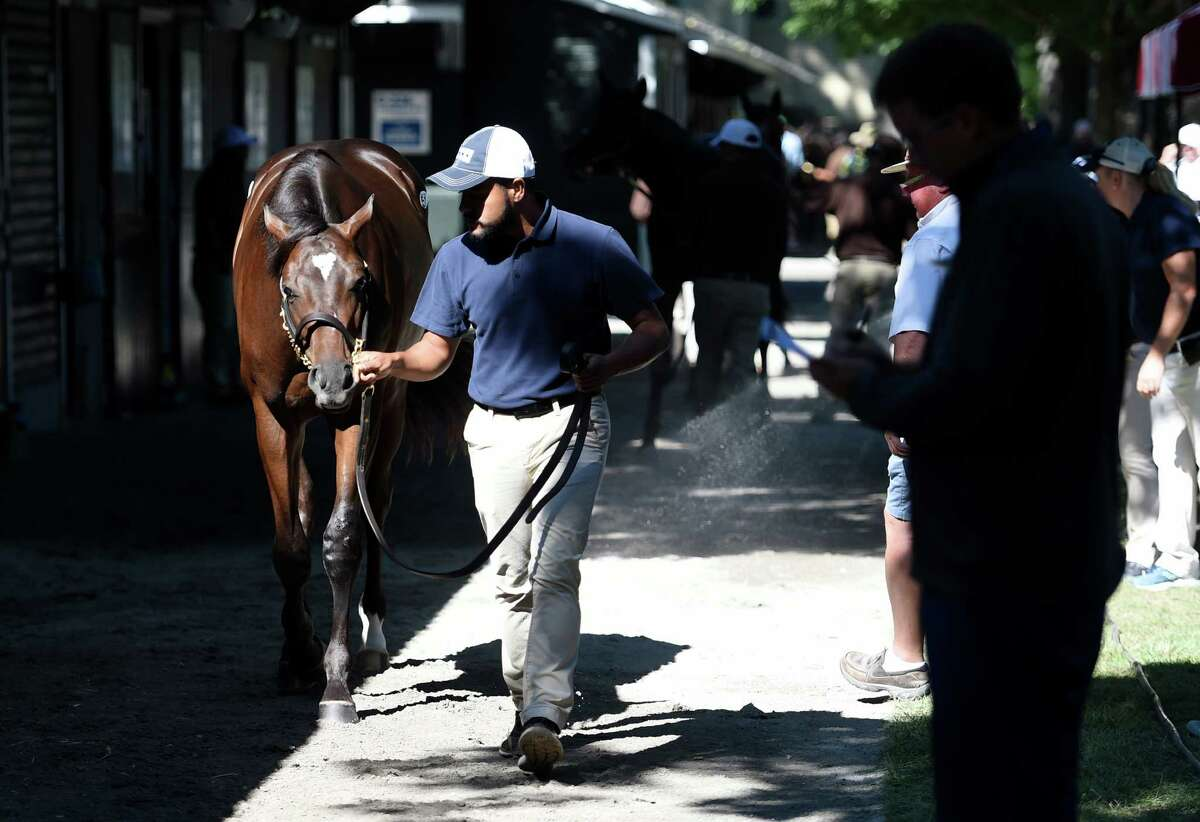 The sales grounds at Fasig-Tipton are very busy with prospective buyers and their connections in the hours before the sale this evening, Monday Aug. 8, 2016 in Saratoga Springs, N.Y. (Skip Dickstein/Times Union)