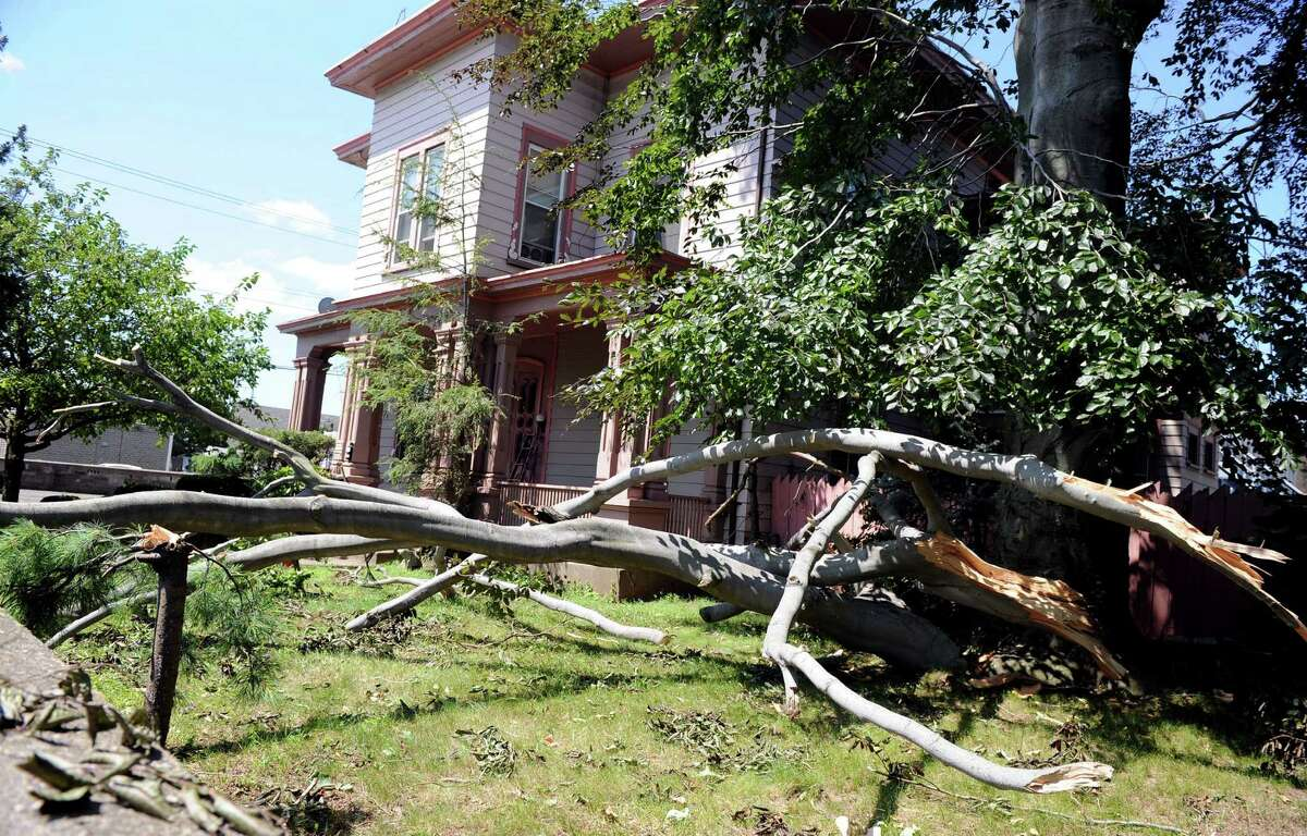 A tree lays across a yard on Noble Avenue in Bridgeport Friday June 25, 2010. The damage was the result of a tornado with 100 mph winds that touched down in Bridgeport Thursday.