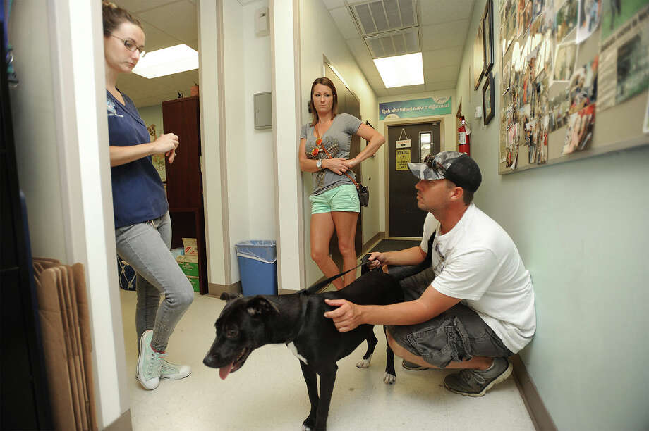 An adoption volunteer at Beaumont Animal Services Ashley Morreale, left, talks to Brandy Faneros and Kevin Hales while adopting Holly on Monday. Photo taken Monday, August 08, 2016 Guiseppe Barranco/The Enterprise Photo: Guiseppe Barranco, Photo Editor