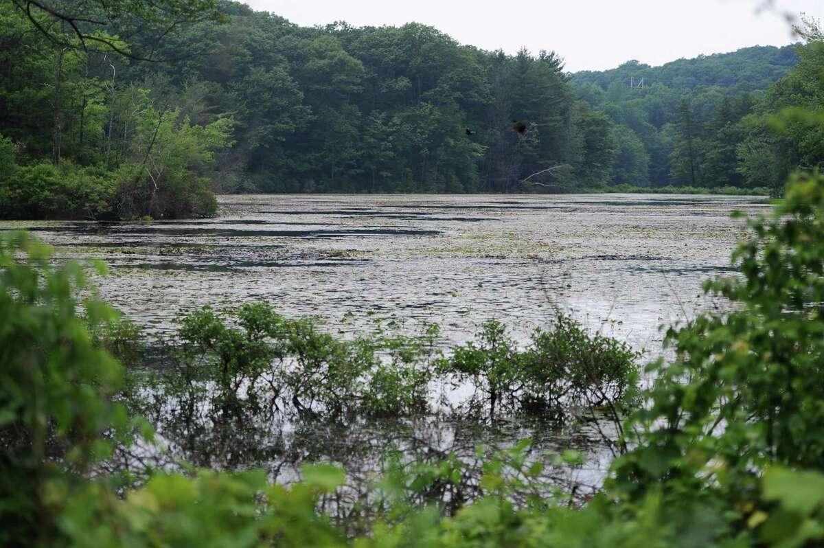 Photo of the Chestnut Ridge Reservoir in Bethel on Tuesday, June 25, 2013.