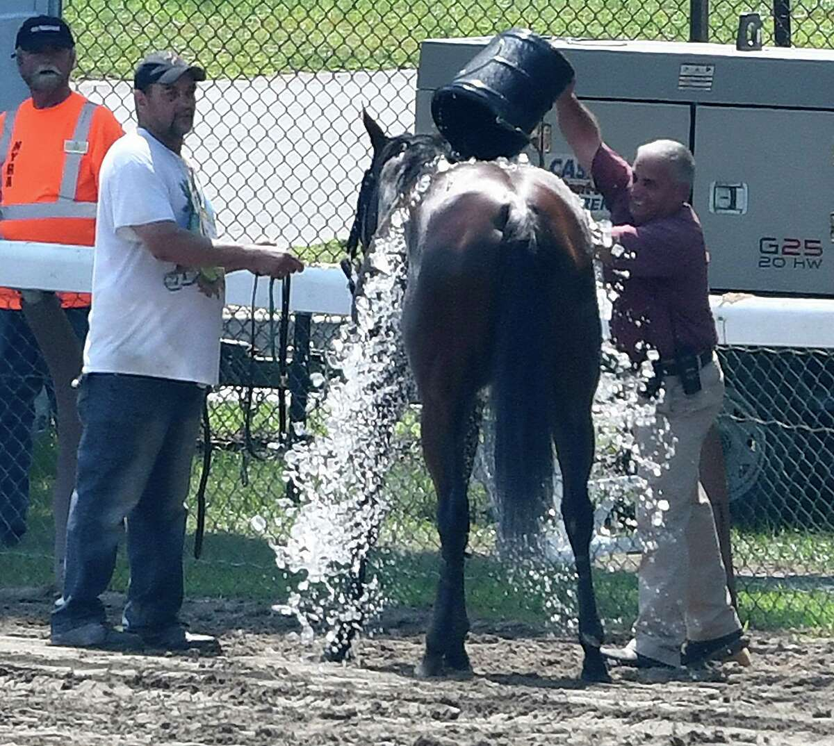 Dr. Anthony Verderosa, chief examining veterinarian for NYRA, right, gives a race competitor an ice bath after the second race on the card at the Saratoga Race Course Thursday Aug. 11, 2016 in Saratoga Springs, N.Y. (Skip Dickstein/Times Union)