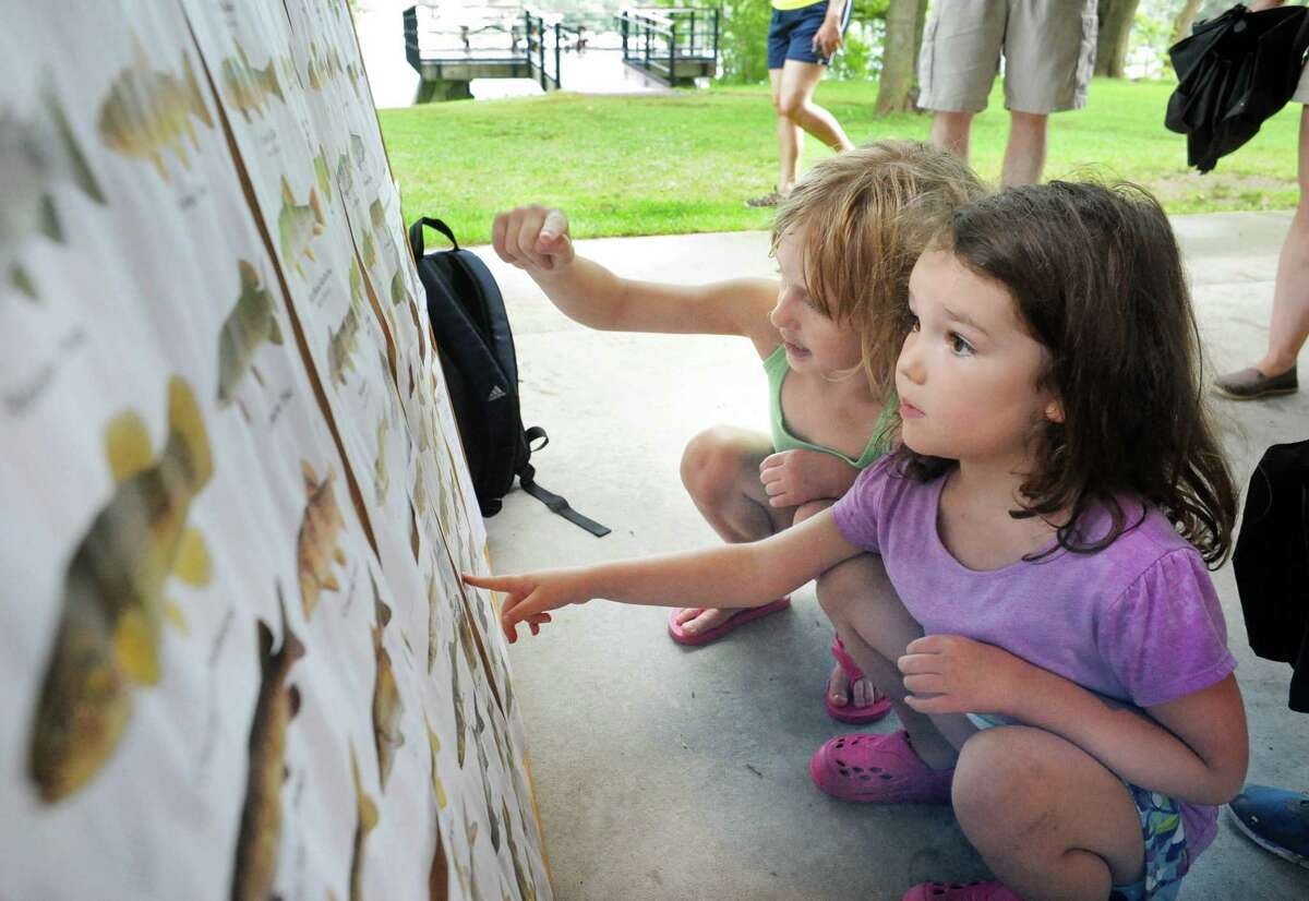Five-year-olds Amelia Geurin, left, and Molly Quidort, both of Delmar, check out a fish chart before helping out at the fourth annual Great Hudson River Estuary Fish Count at Peebles Island State Park Saturday, August 15, 2015 in Cohoes, NY. (John Carl D'Annibale / Times Union)