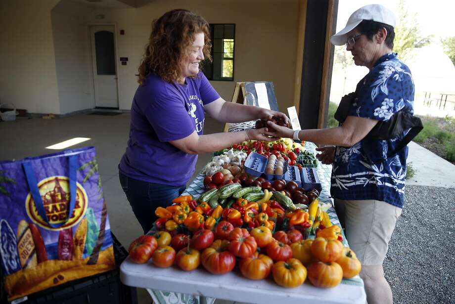 Farmer Hope Sippola sells produce to customer Marie Ramos at the biweekly farm stand at the Cannery in Davis. Photo: Scott Strazzante, The Chronicle
