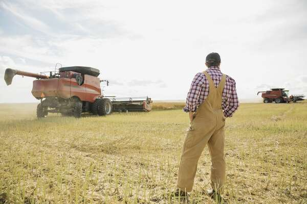 Farmer   