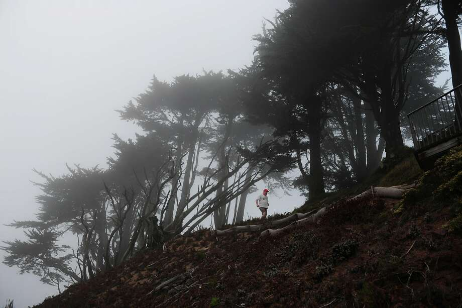 A runner makes his way through the trees and fog atop Grand View Park, a hilltop oasis in the Sunset District, where fog shows up throughout the year. Photo: Craig Hudson, The Chronicle