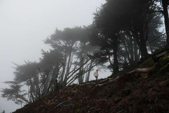 A runner makes his way through the trees and fog atop Grand View Park in the Sunset District on August 28, 2014 in San Francisco, CA.