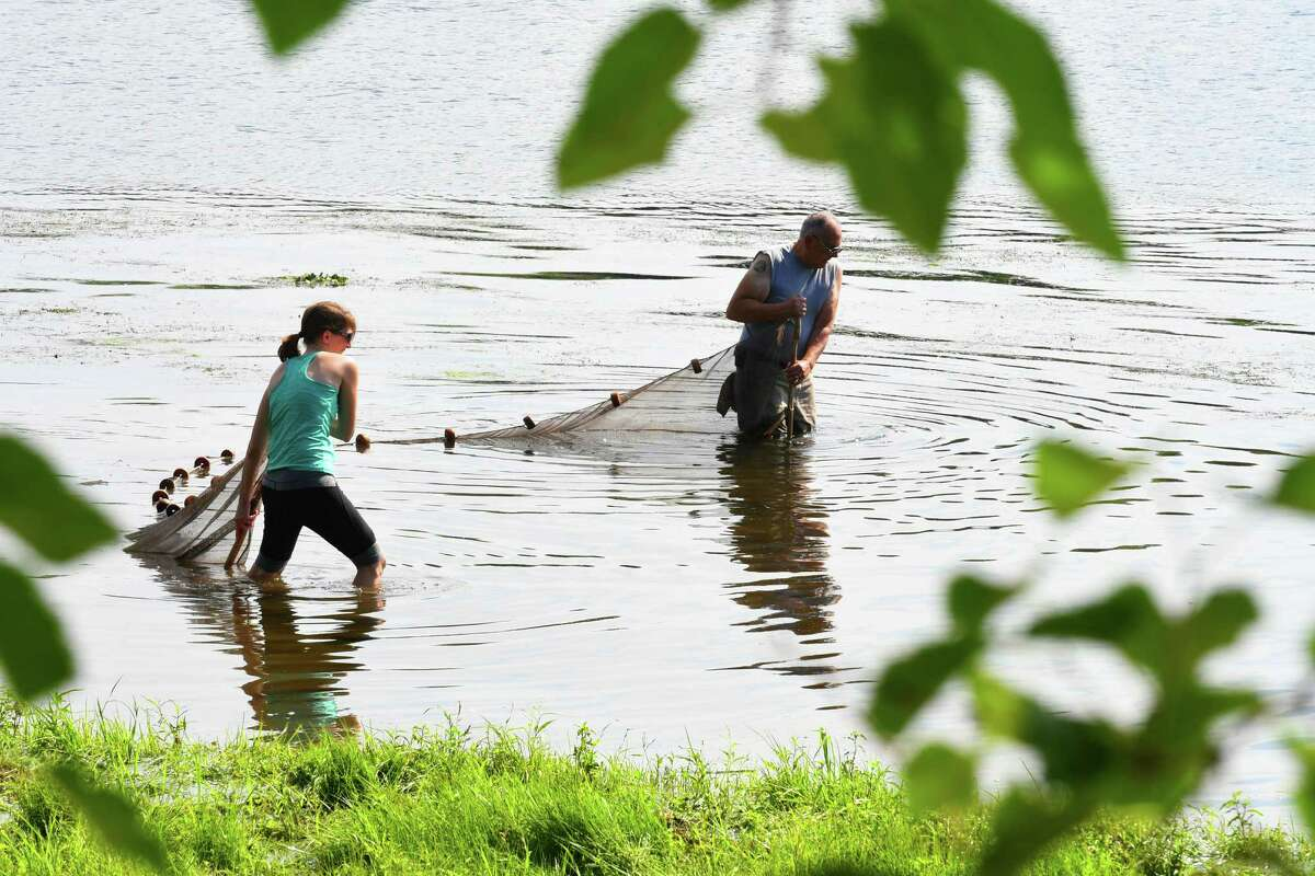Brandi Bornt, lefrt, and Robert Price work at netting fish during the NYS Office of Parks/Hudson River Estuary Program Naturalists coordinated DEC's Great Hudson River Estuary Fish Count at Peebles Island State Park on Saturday Aug. 13, 2016 in Waterford, N.Y. (Michael P. Farrell/Times Union)