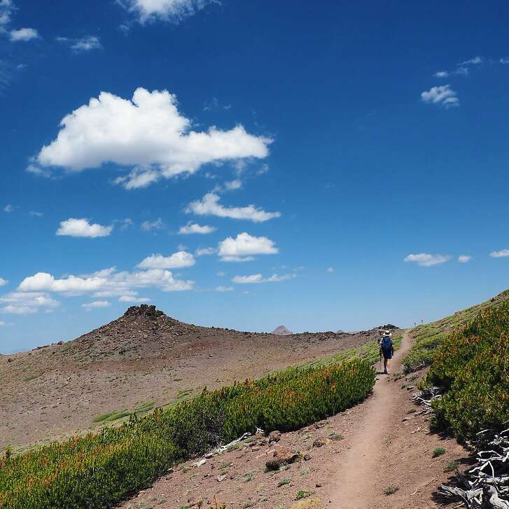 Young hiker heading south along the PCT from Sonora Pass.